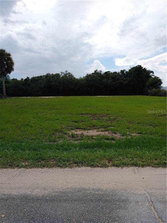 Adell Road, Lake Wales, FL 33898 (MLS #P4906810) :: Team Bohannon Keller Williams, Tampa Properties