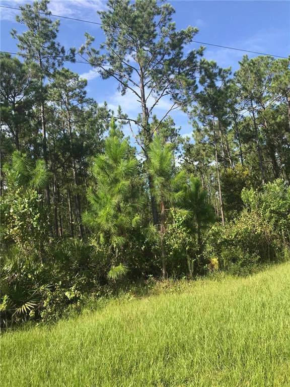 Us Hwy 98 W, Frostproof, FL 33843 (MLS #P4907114) :: Ideal Florida Real Estate