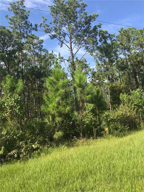 Us Hwy 98 W, Frostproof, FL 33843 (MLS #P4907120) :: Cartwright Realty