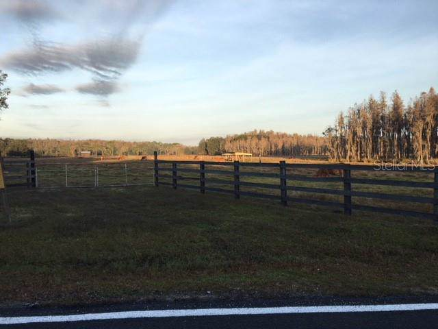 15135 Rockridge Road, Polk City, FL 33868 (MLS #P4907806) :: Lock & Key Realty