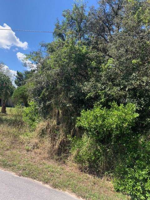Myrtle Avenue, Lake Wales, FL 33898 (MLS #P4908171) :: NewHomePrograms.com LLC