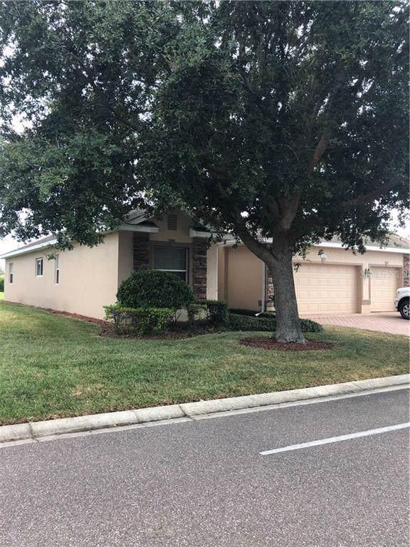 3848 Traditions Boulevard N, Winter Haven, FL 33884 (MLS #P4908535) :: Dalton Wade Real Estate Group