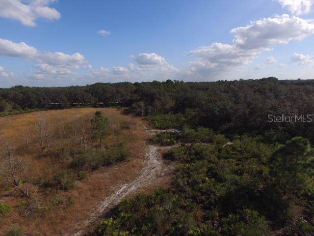 1484 Scrub Jay Trail, Frostproof, FL 33843 (MLS #P4908982) :: The Heidi Schrock Team