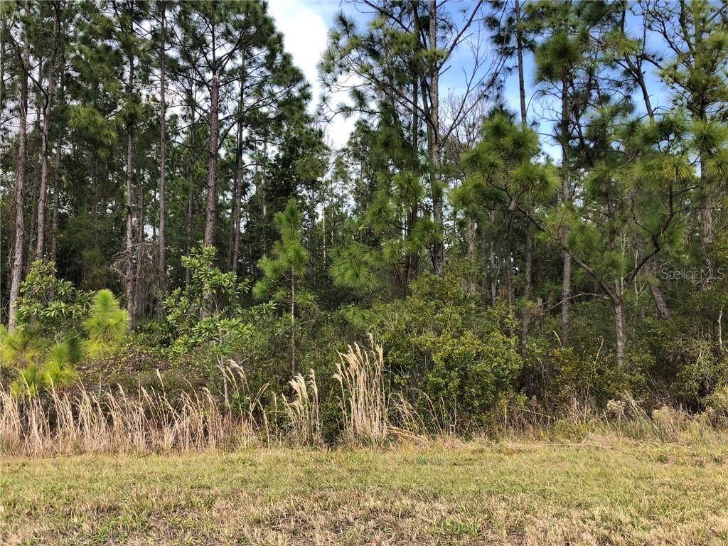 Florida Jay Lane - Photo 1