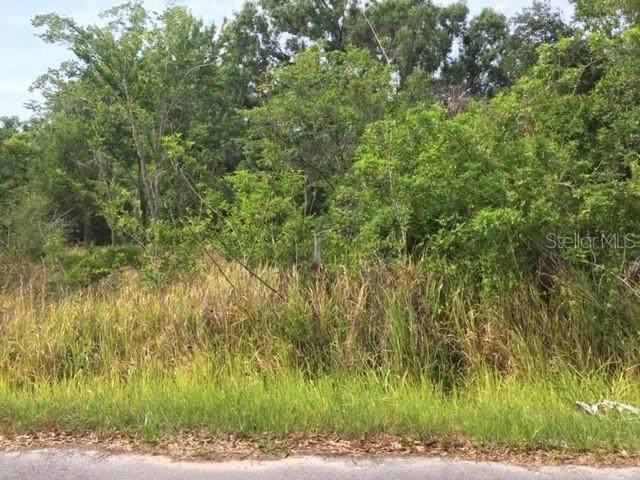 Mullet Road, Auburndale, FL 33823 (MLS #P4909792) :: Alpha Equity Team
