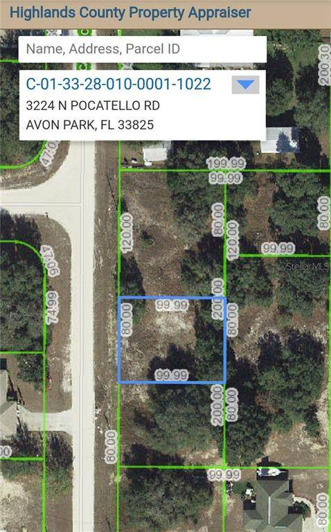 3224 N Pocatello Road, Avon Park, FL 33825 (MLS #P4911399) :: Heckler Realty