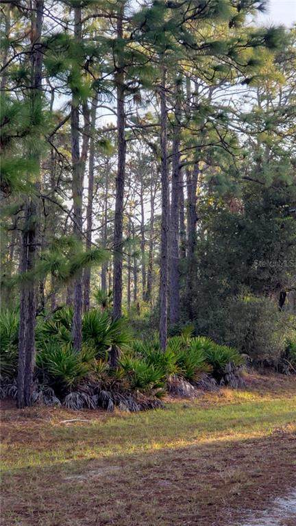 922 Oleander Drive, Indian Lake Estates, FL 33855 (MLS #P4911754) :: Team Bohannon Keller Williams, Tampa Properties