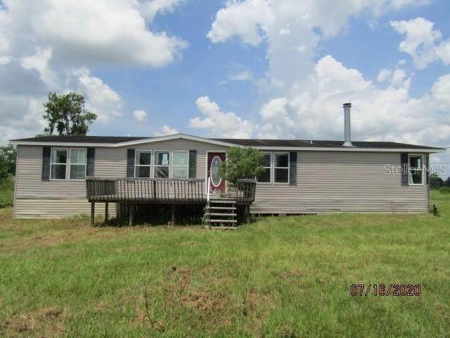 828 Pine Avenue, Polk City, FL 33868 (MLS #P4911856) :: Cartwright Realty