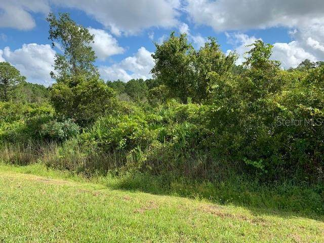 Us Hwy 27, Frostproof, FL 33843 (MLS #P4912406) :: Zarghami Group