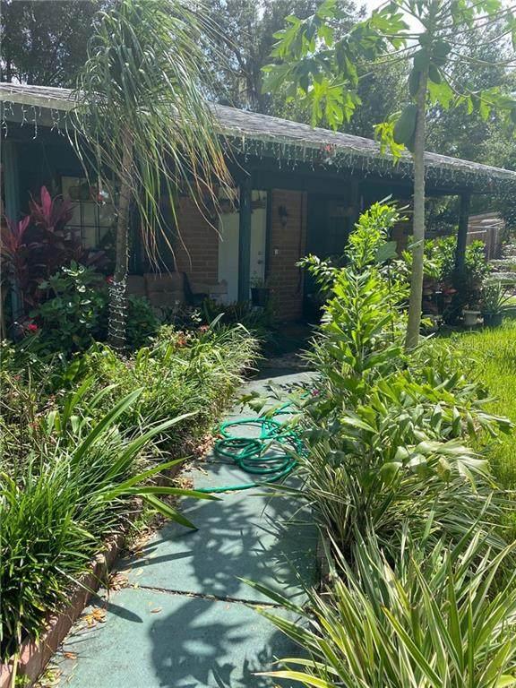 3552 Doreen Drive, Lakeland, FL 33810 (MLS #P4912566) :: Team Bohannon Keller Williams, Tampa Properties