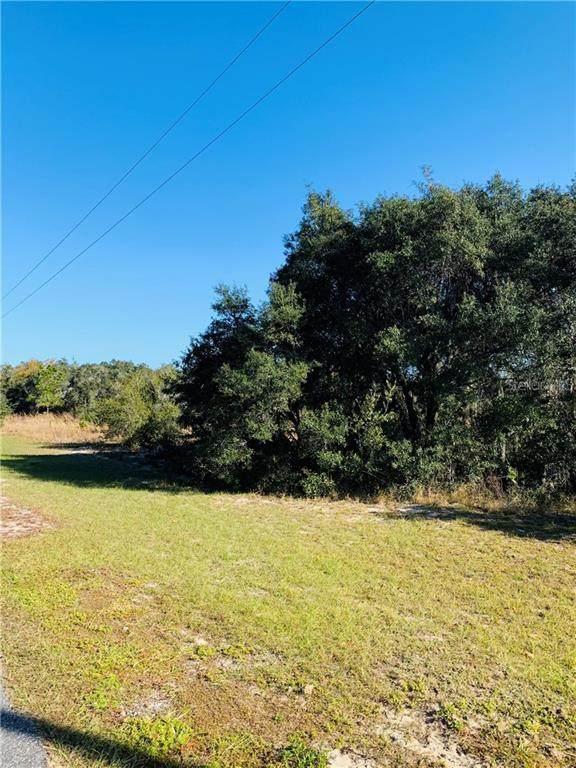 0 Deer Road, Frostproof, FL 33843 (MLS #P4913850) :: Premier Home Experts