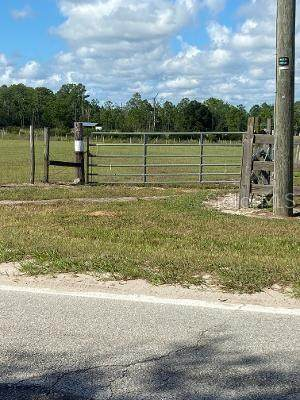 Demille Road, Polk City, FL 33868 (MLS #P4917855) :: Delgado Home Team at Keller Williams