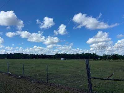 Demille Road, Polk City, FL 33868 (MLS #P4917856) :: Delgado Home Team at Keller Williams