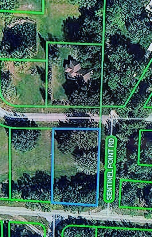 1001 Whispering Oaks Court, Sebring, FL 33875 (MLS #P4917922) :: Pristine Properties