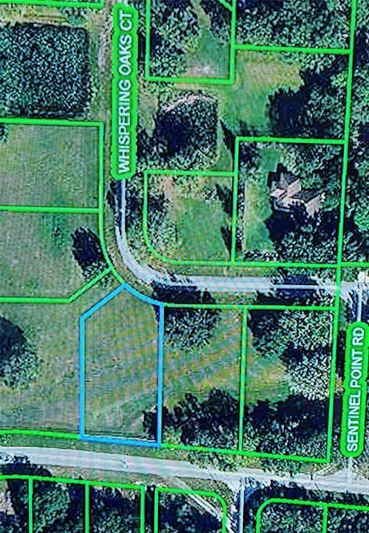 1009 Whispering Oaks Court, Sebring, FL 33875 (MLS #P4917924) :: Pristine Properties