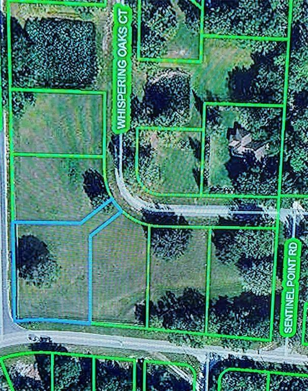1013 Whispering Oaks Court, Sebring, FL 33875 (MLS #P4917938) :: Pristine Properties