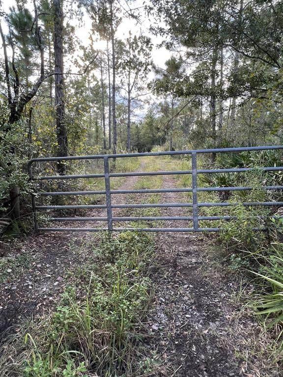 0 Doherty Road, Lake Wales, FL 33898 (MLS #P4917949) :: Charles Rutenberg Realty
