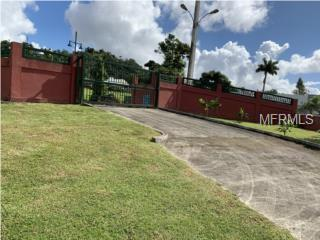 Address Not Published, GUAYNABO, PR 00969 (MLS #PR9088669) :: Team Bohannon Keller Williams, Tampa Properties