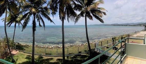 968 Camino Las Picuas, RIO GRANDE, PR 00745 (MLS #PR9089639) :: Cartwright Realty