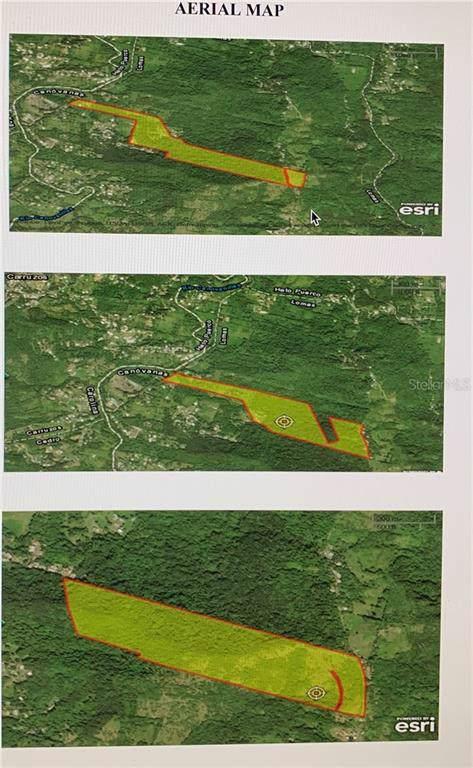 Sr 185 Km 10.5 Interior Lomas Ward, CANOVANAS, PR 00729 (MLS #PR9089842) :: Rabell Realty Group