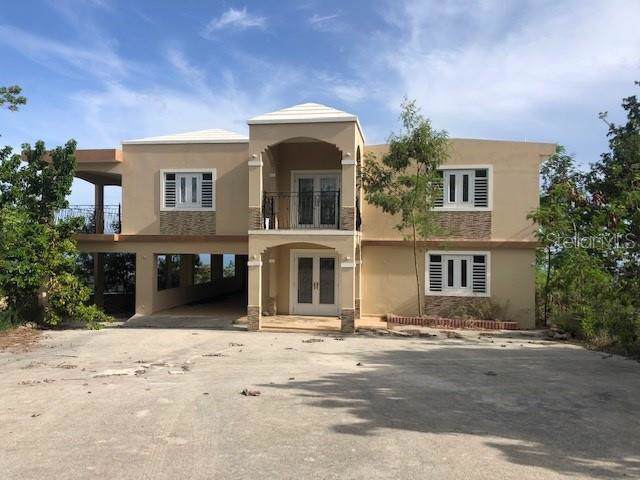 CALLE 1 E Bo Jaucas B5, SANTA ISABEL, PR 00757 (MLS #PR9089888) :: Dalton Wade Real Estate Group