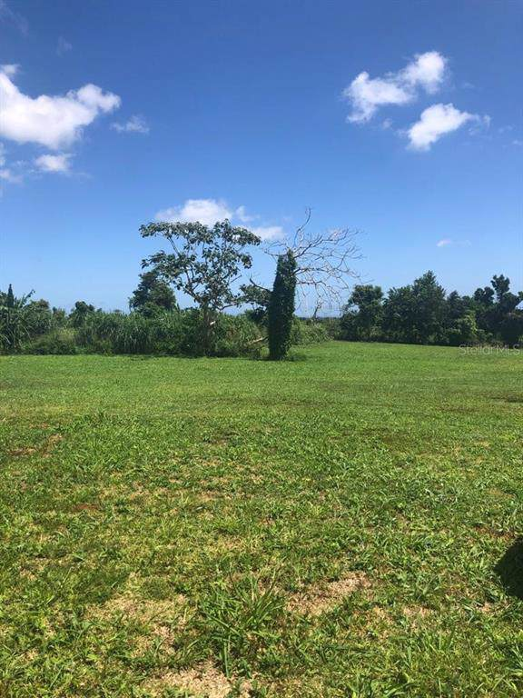 Paseo Paraiso, AGUADILLA, PR 00603 (MLS #PR9090000) :: Premium Properties Real Estate Services