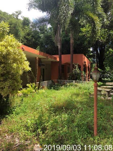 COLINAS DEL YUNQUE A20 8 St - Photo 1