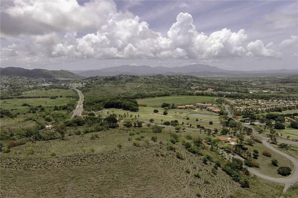 1A Palmas Plantation - Photo 1