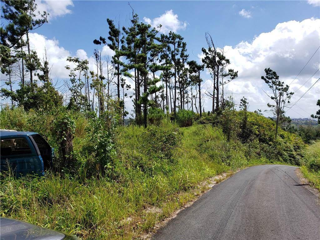Carr 809 KM 3.9 Int Carr 809 Km 3.9 Int - Photo 1