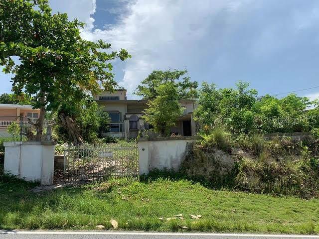499 Estacion Avenue, ISABELA, PR 00662 (MLS #PR9090594) :: Team Bohannon Keller Williams, Tampa Properties