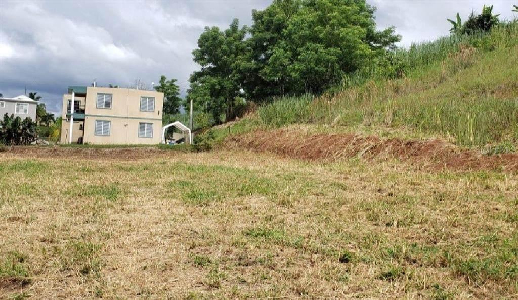 PR 411 km 2.0 Bo. Guayabo - Photo 1