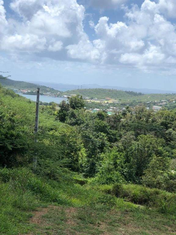 Resaca, CULEBRA, PR 00775 (MLS #PR9091312) :: Alpha Equity Team