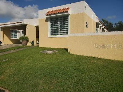 1 Calle 1 #20, HUMACAO, PR 00791 (MLS #PR9091419) :: Team Bohannon Keller Williams, Tampa Properties