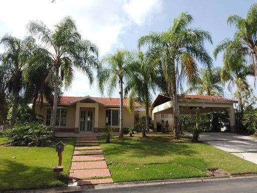37 Camino De Las Cascadas #37, CIDRA, PR 00739 (MLS #PR9091525) :: Mark and Joni Coulter   Better Homes and Gardens
