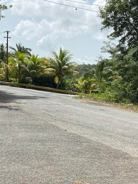 Carr 512 Km 6.2, JUANA DIAZ, PR 00795 (MLS #PR9093830) :: Premium Properties Real Estate Services