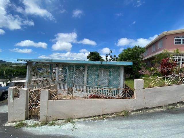 501-673970 30 T 115 KM 1.0 INT, FAJARDO, PR 00738 (MLS #PR9094038) :: Young Real Estate