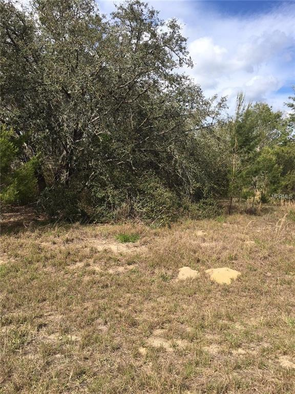 Fisher Way, Ocklawaha, FL 32179 (MLS #R4900044) :: The Lockhart Team