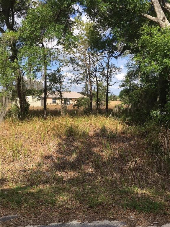 Locust Pass, Ocala, FL 34472 (MLS #R4900045) :: RE/MAX Realtec Group