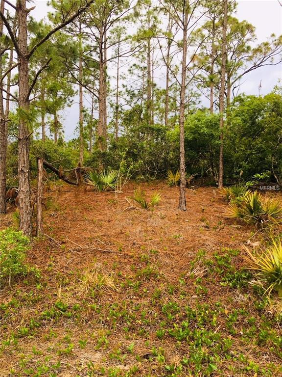 124 Fascination Drive, Lake Placid, FL 33852 (MLS #R4900078) :: RE/MAX Realtec Group