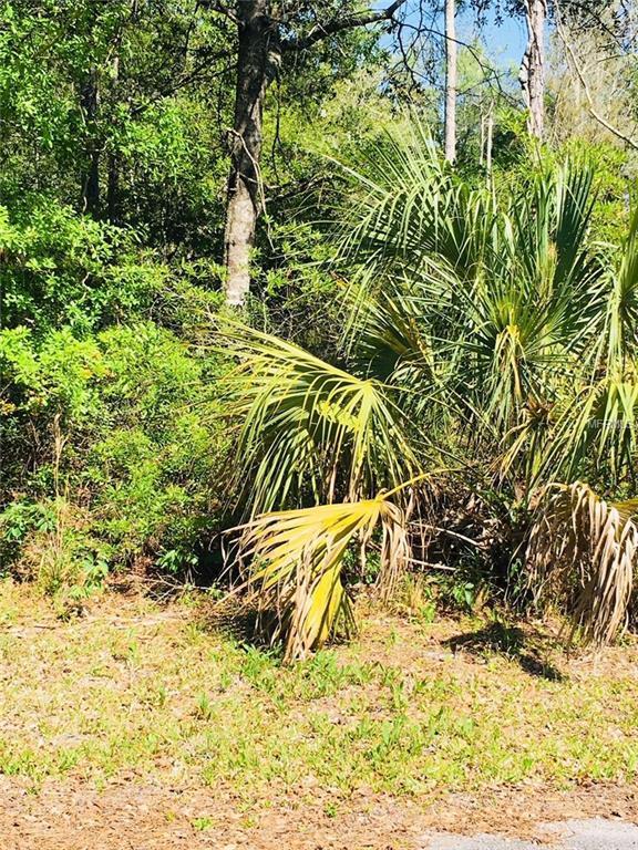 9421 N Beechtree Way, Crystal River, FL 34428 (MLS #R4900128) :: The Duncan Duo Team