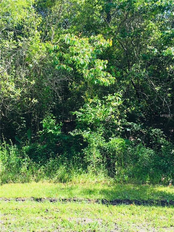 8400 W Mayo Drive, Crystal River, FL 34429 (MLS #R4900130) :: The Lockhart Team