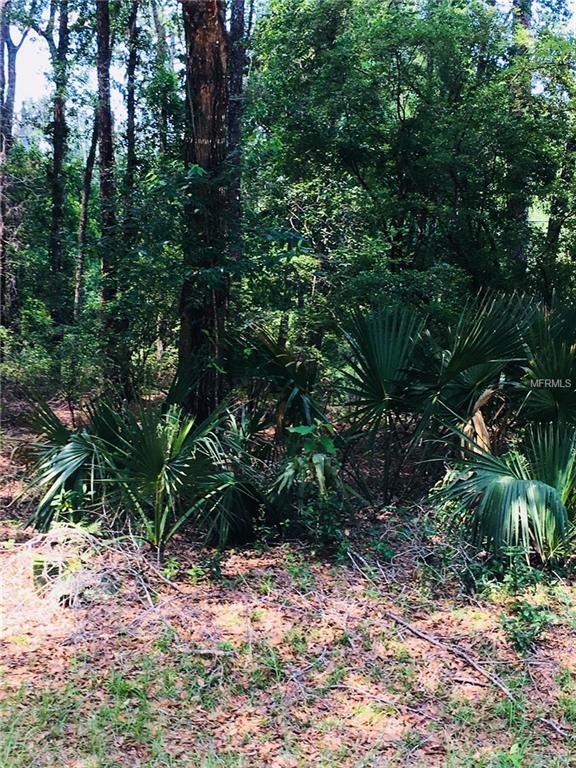 4159 E Carl Ramm Lane, Inverness, FL 34452 (MLS #R4900133) :: Mark and Joni Coulter | Better Homes and Gardens