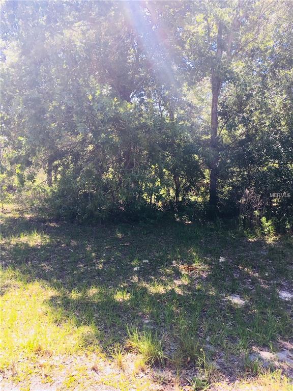 SW 61ST Circle, Ocala, FL 34473 (MLS #R4900136) :: The Lockhart Team