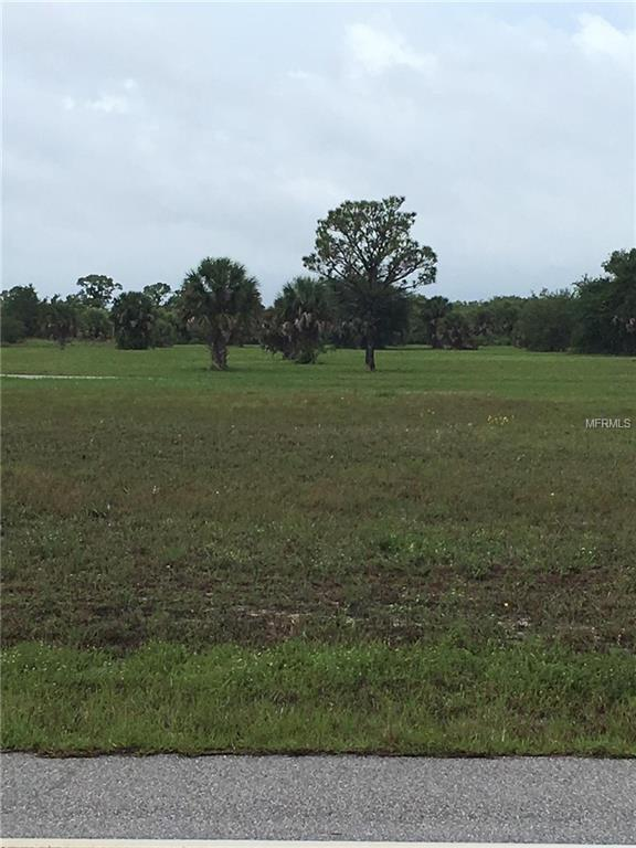 95 Harness Road, Placida, FL 33946 (MLS #R4900241) :: The BRC Group, LLC