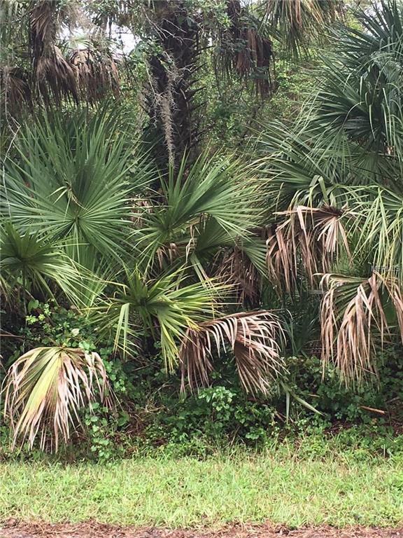 177 Santa Fe Street, Port Charlotte, FL 33953 (MLS #R4900273) :: Mark and Joni Coulter | Better Homes and Gardens