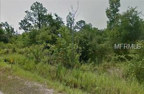 Sink Hole Road, Lake Wales, FL 33859 (MLS #R4900900) :: Delgado Home Team at Keller Williams