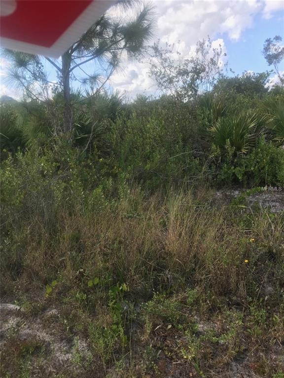 6017 Karen Avenue N, Lehigh Acres, FL 33971 (MLS #R4901082) :: The Duncan Duo Team