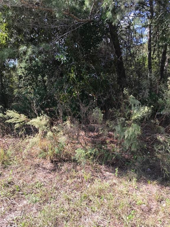 Bedstone Drive, Webster, FL 33597 (MLS #R4901101) :: Mark and Joni Coulter | Better Homes and Gardens