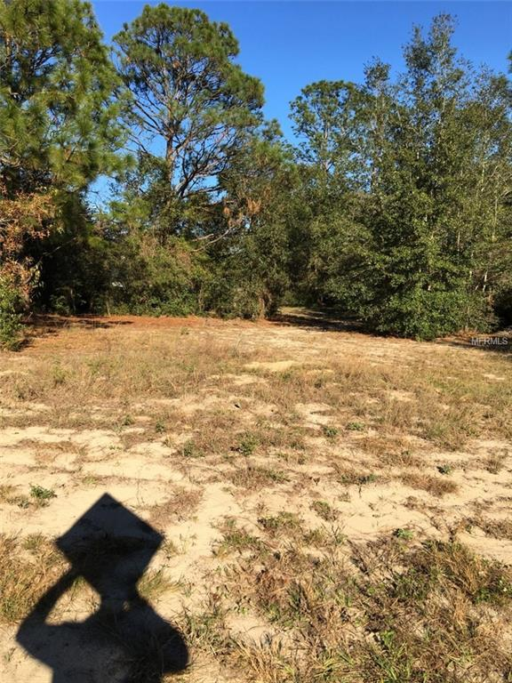 SW 202ND Avenue, Dunnellon, FL 34431 (MLS #R4901191) :: The Duncan Duo Team