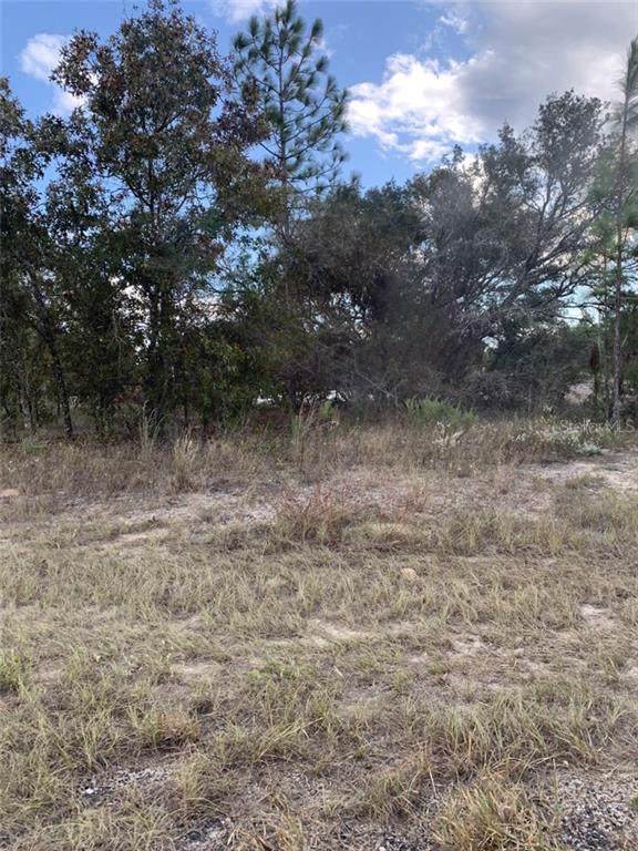 6563 N Killinger Terrace, Citrus Springs, FL 34433 (MLS #R4902358) :: Cartwright Realty